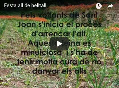 Festa de l'all de Belltall