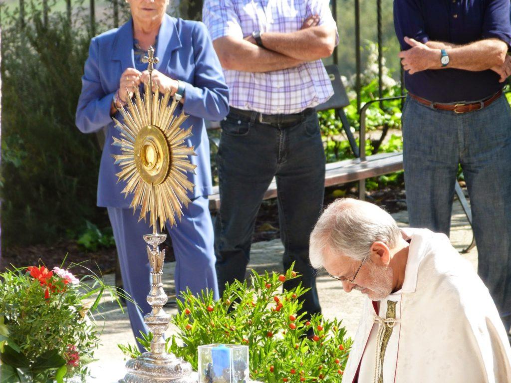 Festa del Sagrat Cor 2014